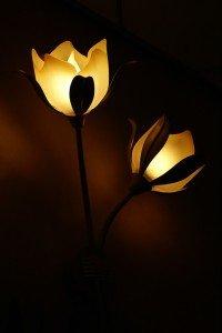 lampe niekverlaan