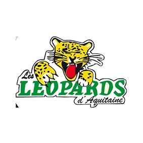 Leopards-Villeneuve