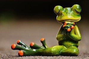 je pense à toi grenouille
