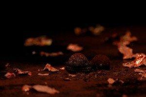 chocolates-563388__340