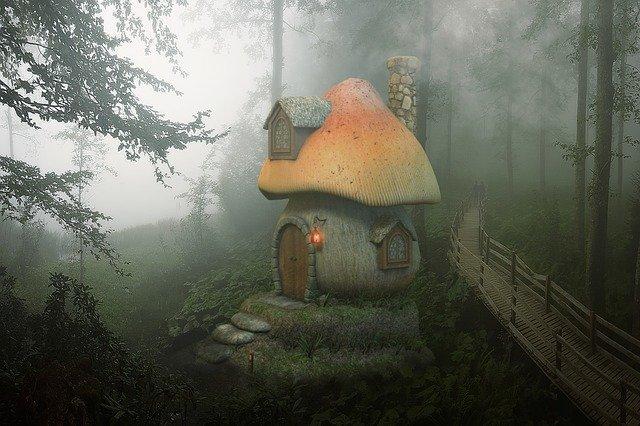 mushroom-3800390_640