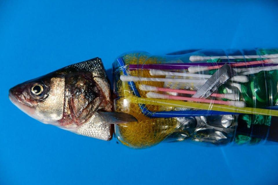 oceans-of-plastic sergi escrinano