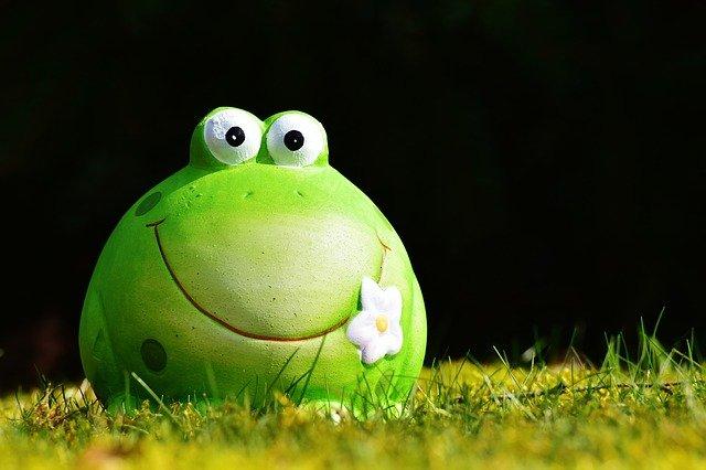 frog-2149404_640
