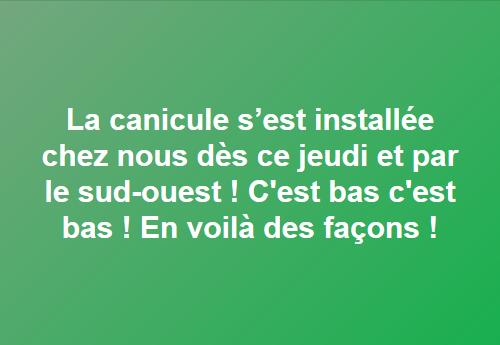 canicule 12