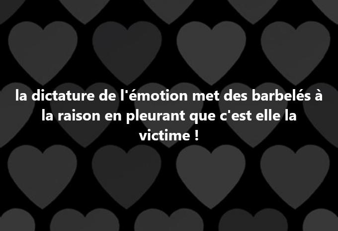 la dictature de l'émotion